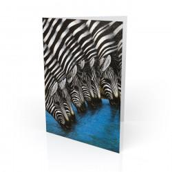 """Zebras At The Watering Hole"" Greeting Card, artwork by Dexter Griffin"