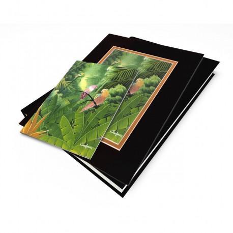 """Tropical Paradise"" Gift Set, artwork by Albert Bonhomme"
